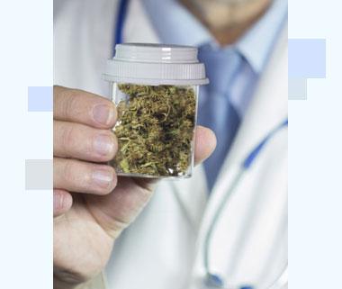 Los-Angeles-Medical-Marijuana-Doctor